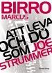 : Att leva och dö som Joe Strummer