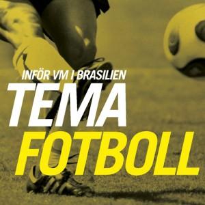 fotbollstema-banner
