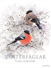 : Vinterfåglar
