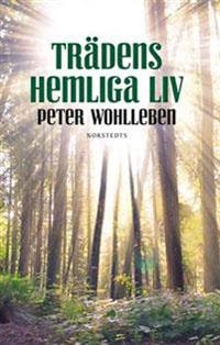 Peter Wohlleben: 'Trädens hemliga liv'