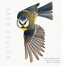 Roine Magnusson, Åsa Ottosson, Mats Ottosson: 'Nära fåglar'