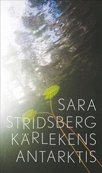 Sara Stridsberg: 'Kärlekens Antarktis'