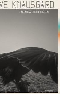 : Fåglarna under himlen