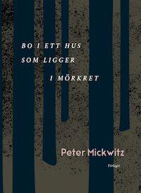 Peter Mickwitz: 'Bo i ett hus som ligger i mörkret'