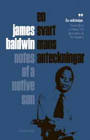 : En svart mans anteckningar