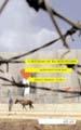 : I skuggan av ockupationen
